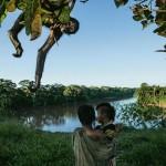 Коренные жители охотятся в лесах Ману в Перу исключительно для поддержания собственного существования. Паукообразные обезьяны – их любимые домашние животные.