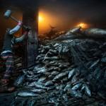 Работник молотком выбивает замороженного тунца на борту китайского грузового судна, пришвартовавшегося в Филиппинах.
