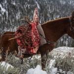 Часть туши и панты лося транспортируются по старинке – на муле.